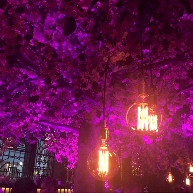 Tattu Restaurant in Spinningfield Manchester mit dem Kirschblütenbaum